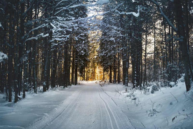 Autoekspert | Jak przygotować samochód do wyjazdu na ferie zimowe?